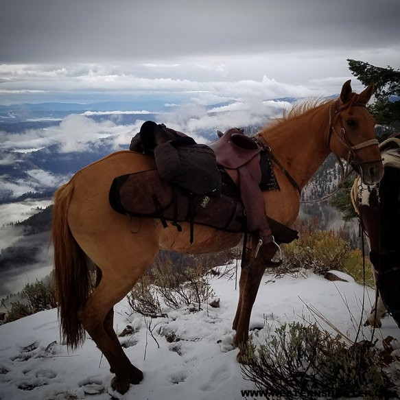 The Ridgeline is in that saddle scabbard. My horse was grateful for a lighter rifle.